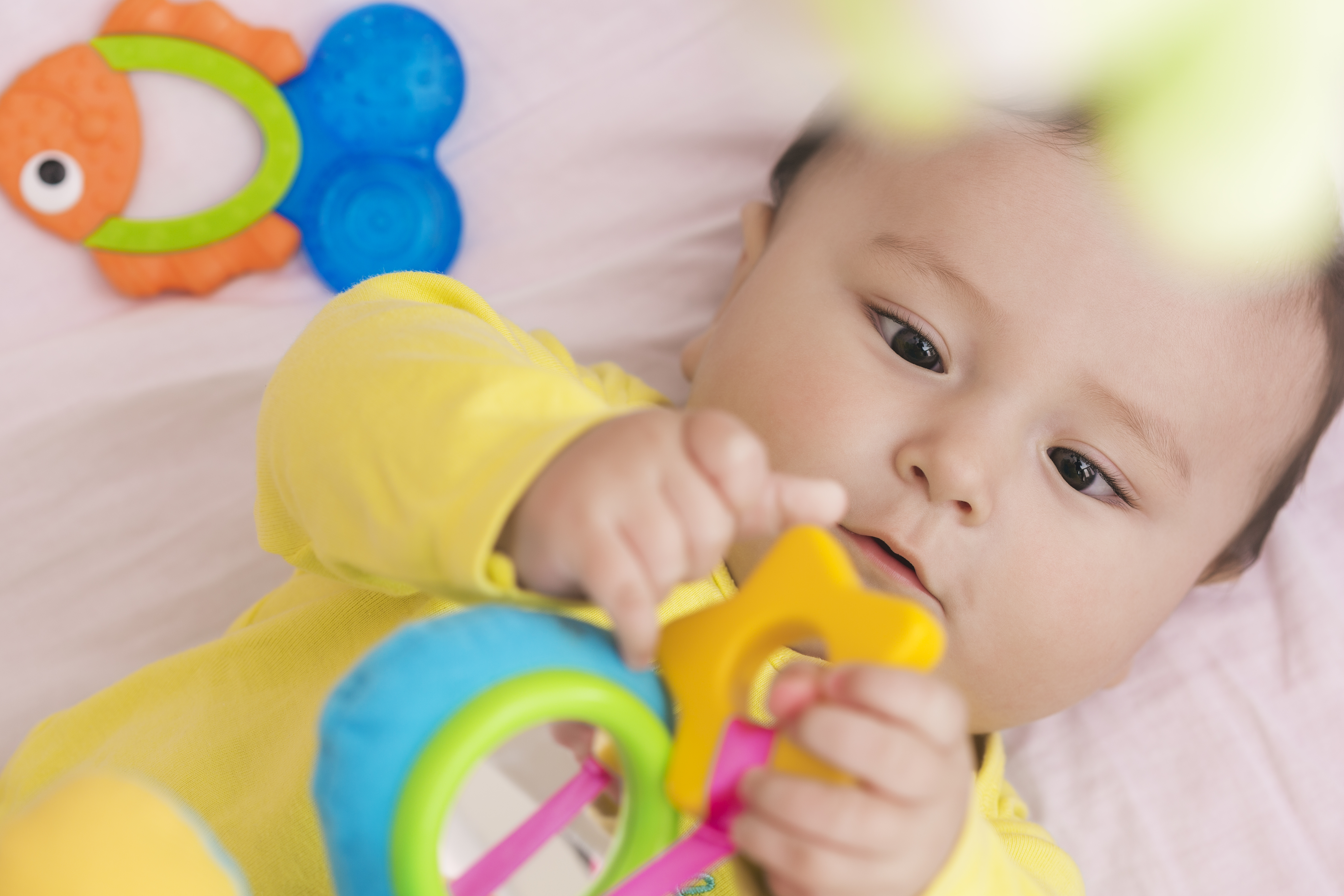 Happy baby lying in his crib looking at toy in his hands intently