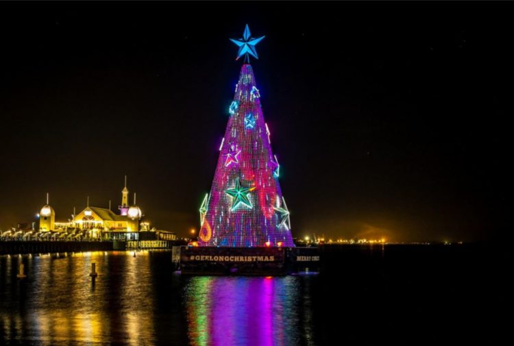 geelong christmas tree night time - How To Check Christmas Lights