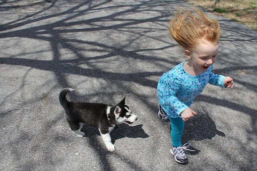 Kids and pets - Girl and puppy