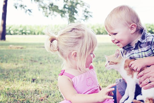 Kids and pets - Kitten and children