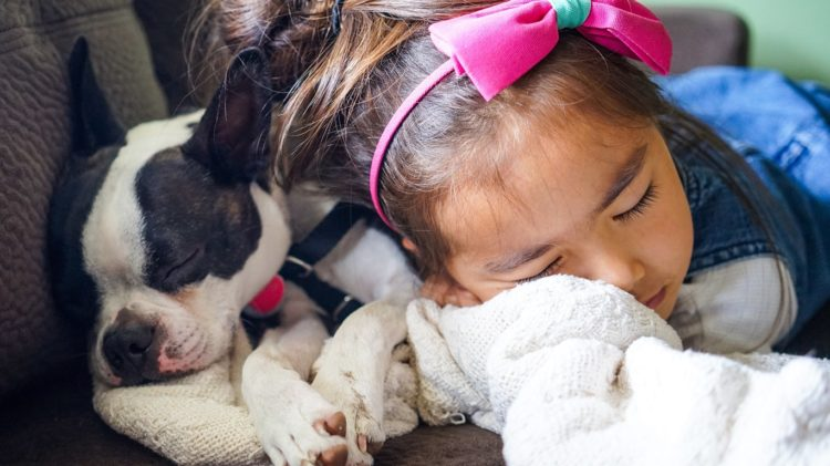 A picture of a child with family pets