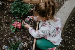 A picture of a girl taking a photo of a flower with a mobile phone