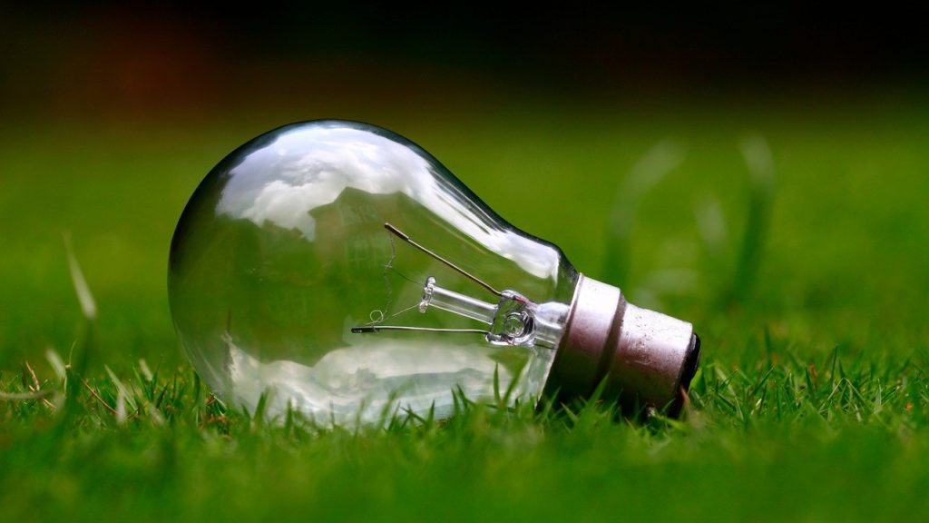A picture of a light bulb lying on the grass